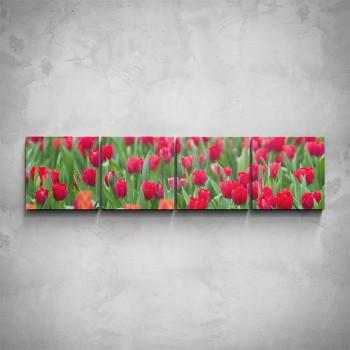 4-dílný obraz - Tulipány