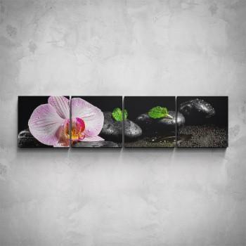 4-dílný obraz - Růžová orchidej