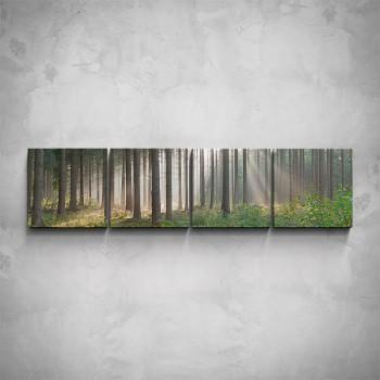 4-dílný obraz - Les