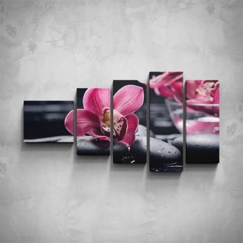 5-dílný obraz - Růžová orchidej