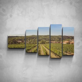 5-dílný obraz - Pohled na vinici