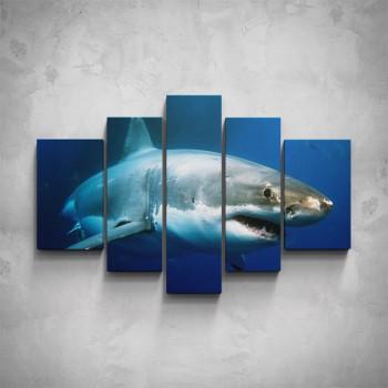 5-dílný obraz - Žralok