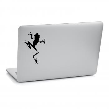 Samolepka na notebook - Žába