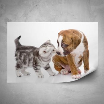 Plakát - Pejsek a kočička