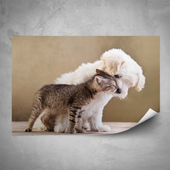 Plakát - Kočička a pejsek