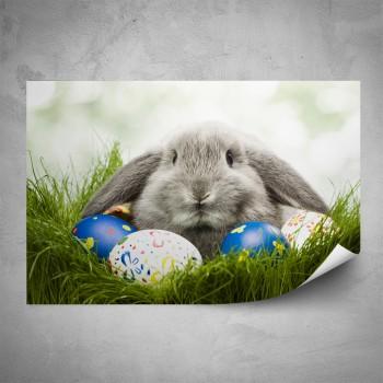 Plakát - Šedý králíček