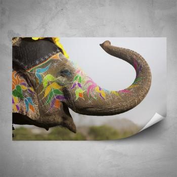Plakát - Pomalovaný slon