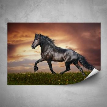 Plakát - Hnědý kůň