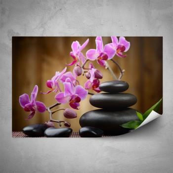Plakát - Orchidej na kamenech