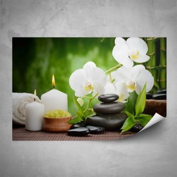 Plakát - Bílá orchidej