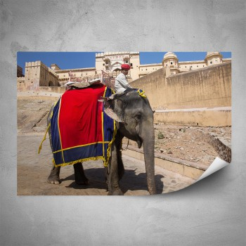 Plakát - Indický slon