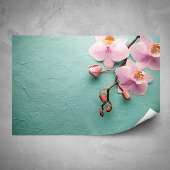 Plakát - Růžová orchidej na mentolu