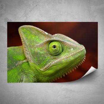 Plakát - Hlava chameleóna