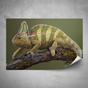 Plakát - Chameleón na větvičce