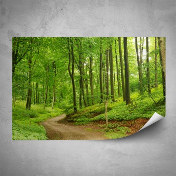 Plakát - Cesta lesem