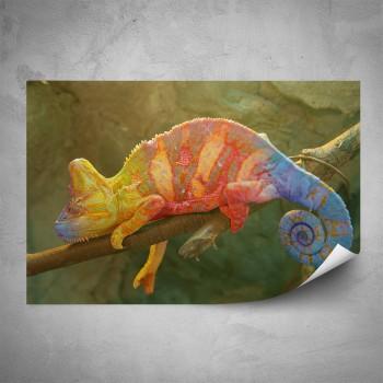 Plakát - Barevný chameleon