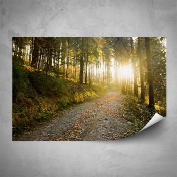 Plakát - Lesní cesta