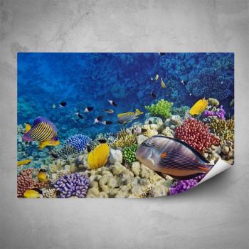 Plakát - Podmořský život