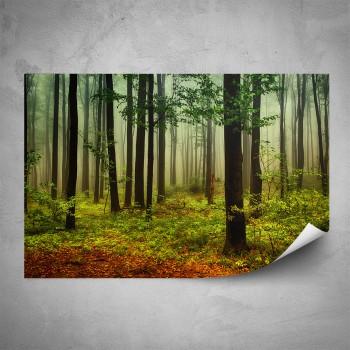 Plakát - Listnatý les