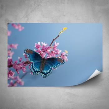 Plakát - Motýl na květině
