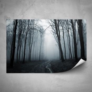 Plakát - Mlhavý les