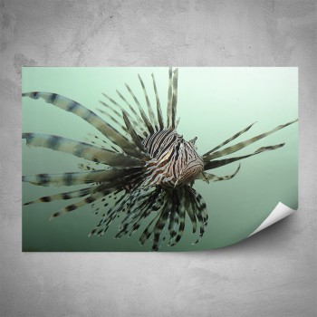 Plakát - Perutýn