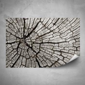 Plakát - Popraskané dřevo
