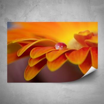 Plakát - Oranžový květ makro