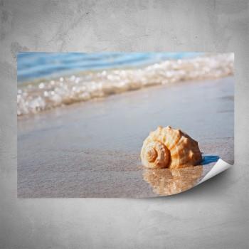 Plakát - Mušle na pláži