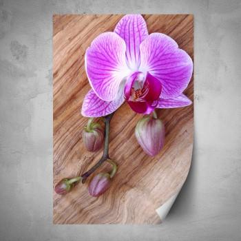 Plakát - Orchidej na dřevě