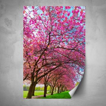 Plakát - Růžová koruna stromu
