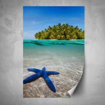 Plakát - Modrá hvězdice