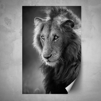 Plakát -Hlava lva