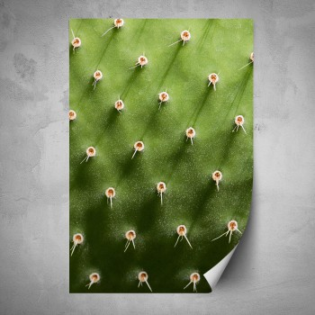 Plakát - Detail kaktusu