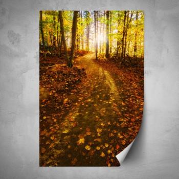 Plakát - Cesta lesem na podzim