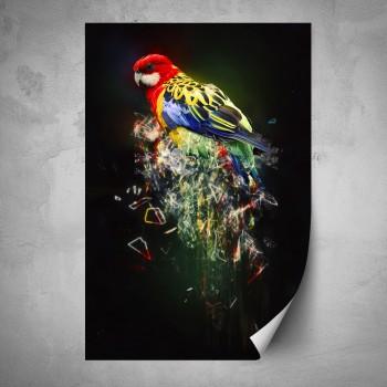 Plakát - Barevný pták