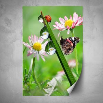 Plakát - Beruška a motýl