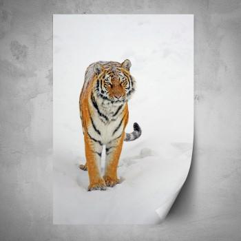 Plakát - Tygr na sněhu