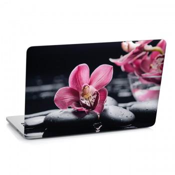 Samolepka na notebook - Orchidej