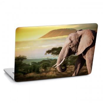 Samolepka na notebook - Hlava slona