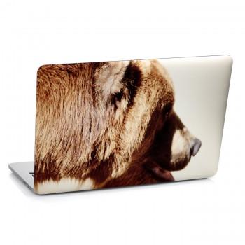 Samolepka na notebook - Medvěd