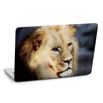 Samolepka na notebook - Hlava lva
