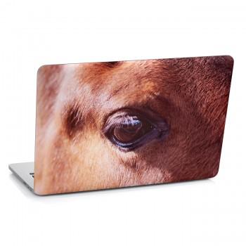Samolepka na notebook - Oko koně