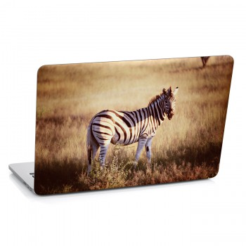 Samolepka na notebook - Zebra