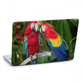 Samolepka na notebook - Papoušci