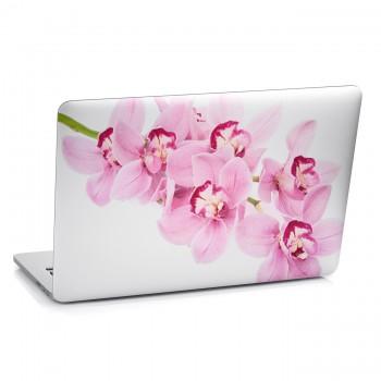 Samolepka na notebook - Květy orchideje