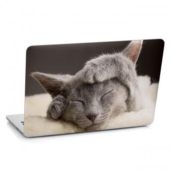 Samolepka na notebook - Spící kočka