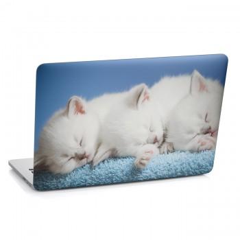 Samolepka na notebook - Bílá koťata