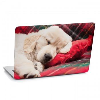 Samolepka na notebook - Spící štěně