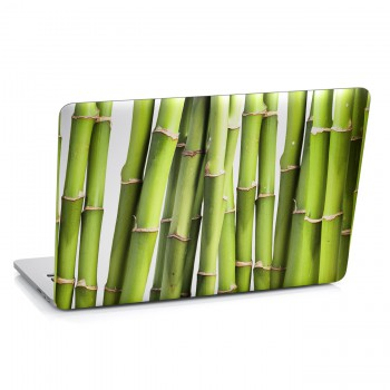 Samolepka na notebook - Bambus detail
